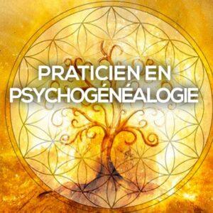 Formation Praticien en psychogénéalogie