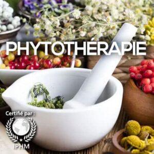 Formation en plantes médicinales et Phytothérapie